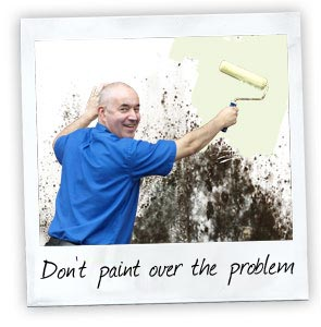 Don't paint over the problem